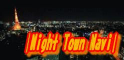 �����T���Ȃ�|Night Town Navi|