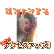 猿でもできるアクセスアップ